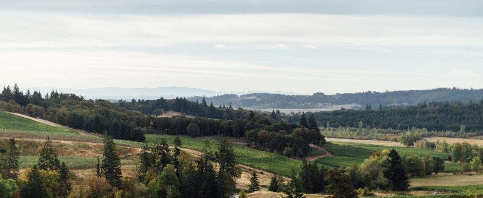 Williamette Valley Landscape Header